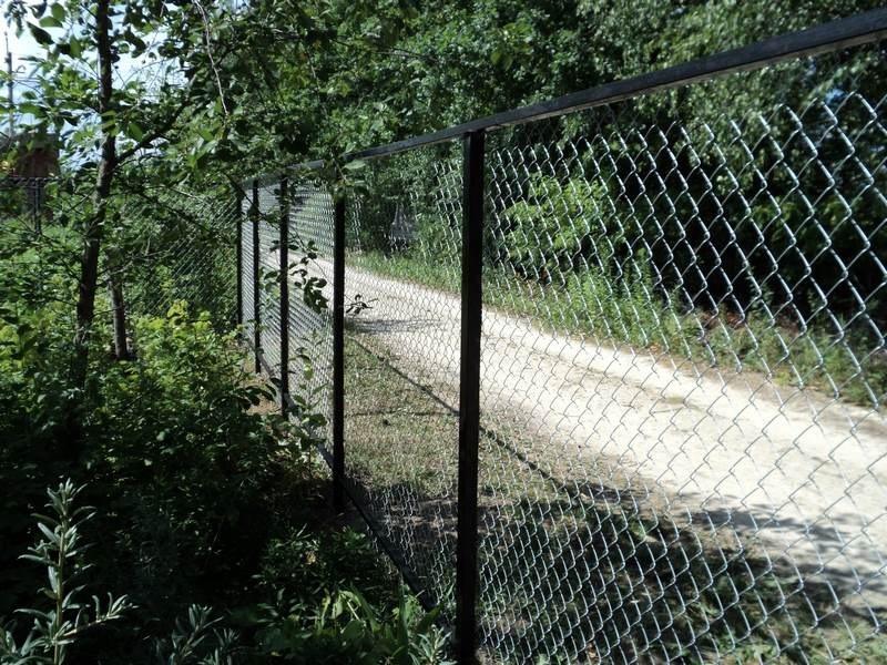 забор из сетки рабицы фото г иркутск будем рассматривать самые